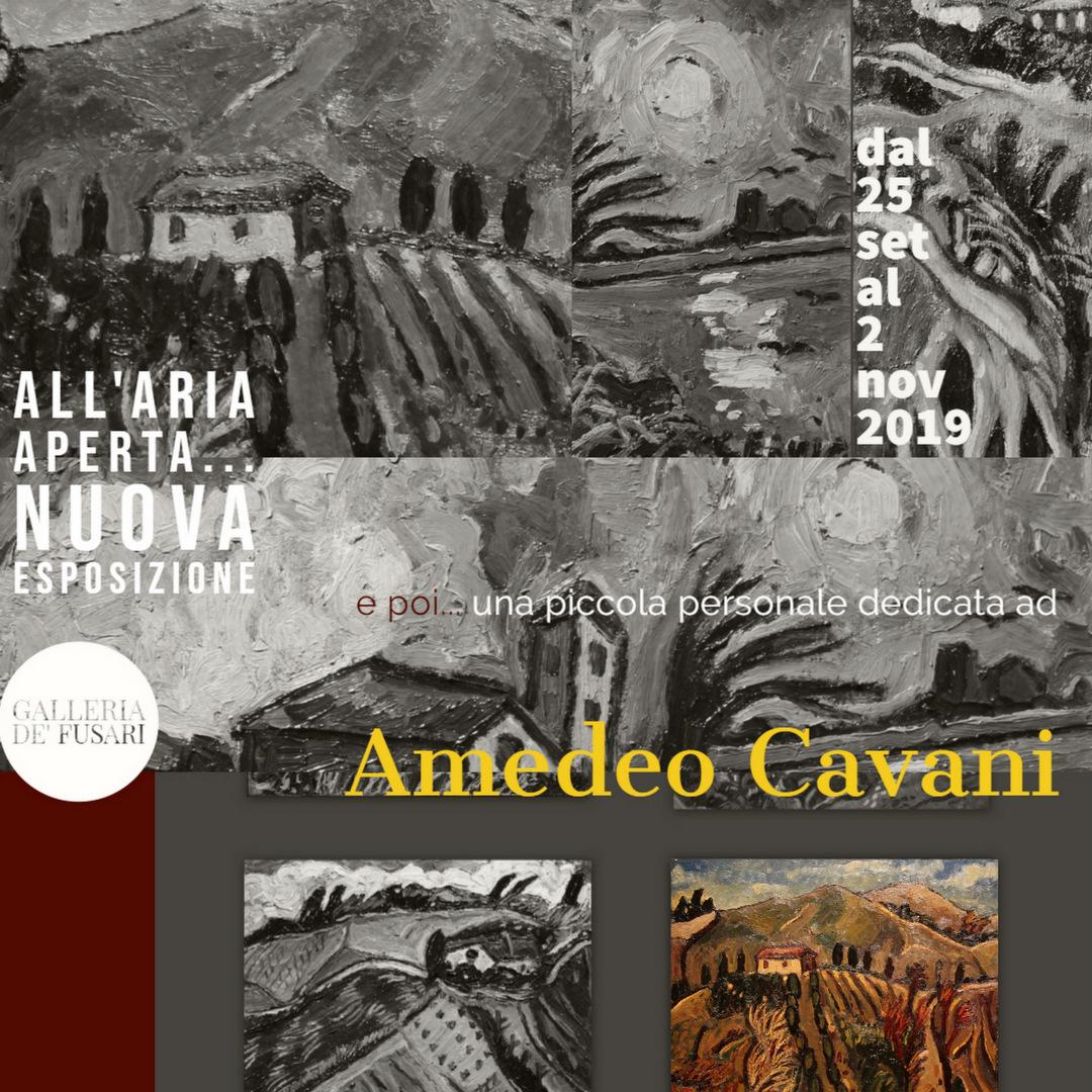 Scheda con Opere di Amedeo Cavani disponibili dal 25 Settembre 2019